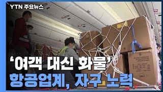 """""""여객 대신 화물'...항공업계, 위기…"""