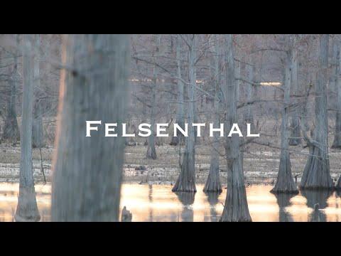 Felsenthal Duck Hunt