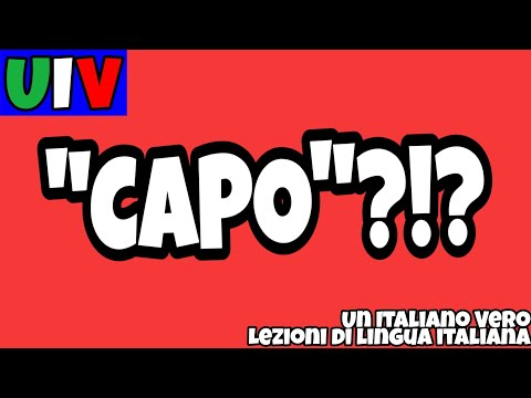 SARANNO FAMOSI from YouTube · Duration:  14 minutes 45 seconds