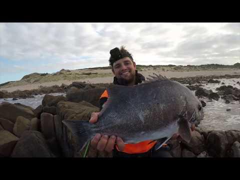 Catching EPIC Winter Fish Amongst The Bricks!  (ft FrannaFishing)