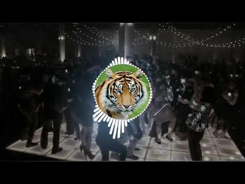 Sher Baja Tiger Dhun (Dhumal  Dj Mix Mp 3 ) New 2018