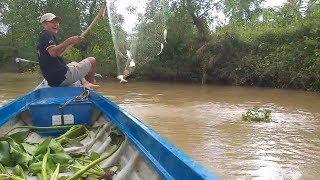 Vớt cá (P1) Nước mới lớn cá ăn liên tục vớt không kịp luôn | Săn bắt SÓC TRĂNG |