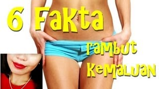 ⭐️ 6 Fakta Rambut Kemaluan ⭐️ 6 Facts About Pubic Hair ⭐️ Indonesian Education Channel about Sex ⭐️