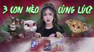 Gọi Điện Cho 3 Con Mèo Cùng Lúc: Giải Thoát Linh Hồn Tom, Angela, Ginger | Meena Channel