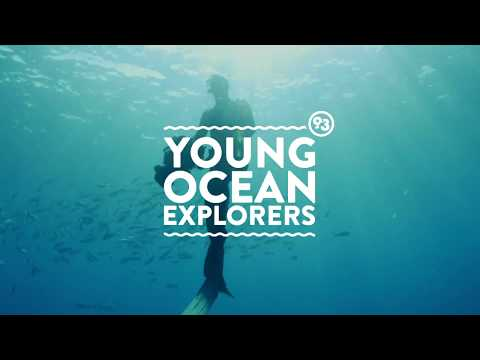Spotted | Episode 2 | Young Ocean Explorers | HEIHEI