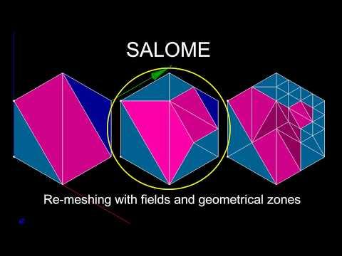 SALOME HOMARD Module: re-meshing by fields