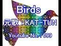 Birds  / 元歌 : KAT-TUN  /  コピー歌唱 : まぼろし