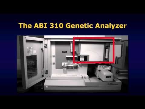 Generating forensic DNA profiles HD version