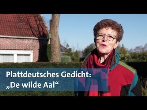 Plattdeutsches Gedicht De Wilde Aal Von Meike Youtube