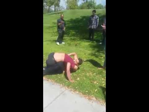 Santa Ana park fight