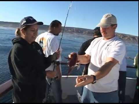 Dan Hernandez on Ranger 85 San Nicoles Island | SPORT FISHING