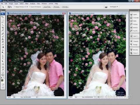 Học photoshop - Kỹ thuật chỉnh sáng và làm tươi màu cho tấm ảnh