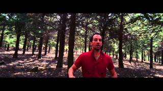 Albert Hammond Jr. - Losing Touch [OFFICIAL VIDEO]