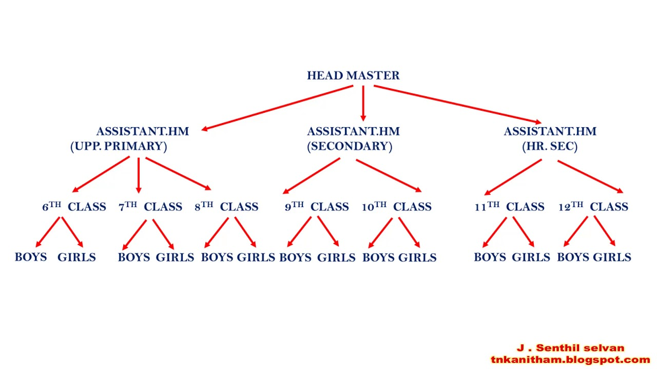 Class Tree Diagram - All Diagram Schematics