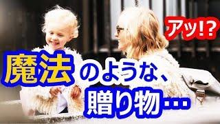 【海外の反応】衝撃!京都・奈良旅行のビデオに世界が仰天!大反響!外国人「まるで映画のよう!」【すごい日本】 thumbnail