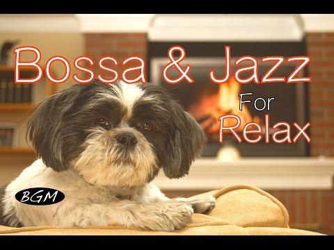 Cafe Music!ボサノバ+ジャズBGMのんびりBGMゆっくりすごしましょう