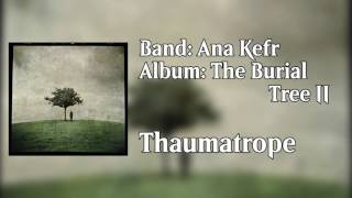 Watch Ana Kefr Thaumatrope video