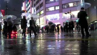 Cool Rainy Nights: Streets of Tokyo
