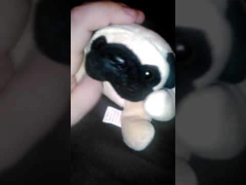 My pugsly the pug beanie baby - YouTube 39678e32254