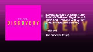 Several Species Of Small Furry Animals Gathered Together In A Cave And Grooving With A Pict...