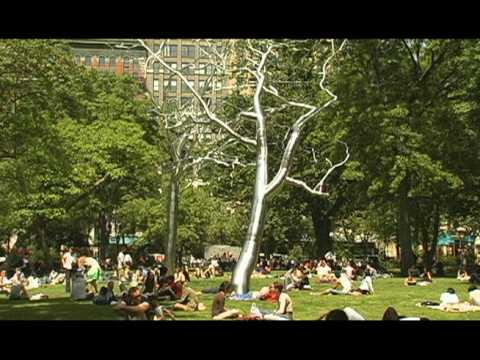 It's My Park: Madison Square Park Portrait