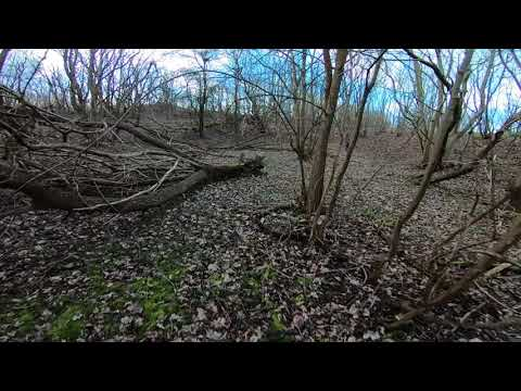 Parkour training POV Running through a small forest 3