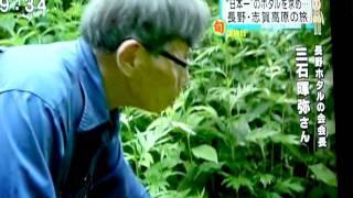 先日7月15日放送の特ダネで、長野・志賀高原の旅! 日本一ホタル求め...
