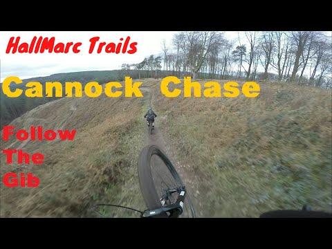 Cannock Chase - Follow The Gib, Helmet Cam / Gimbal, MTB