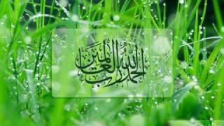 Surah Mulk By Sheikh Mahir Al-Muaiqly Mp3 Yukle Endir indir Download - MP3MAHNI.AZ