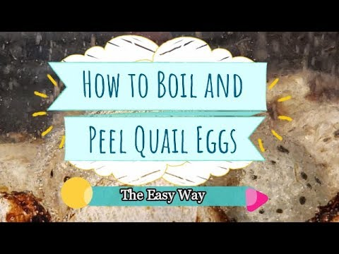 Boiling and Peeling Quail Eggs The Easy Way