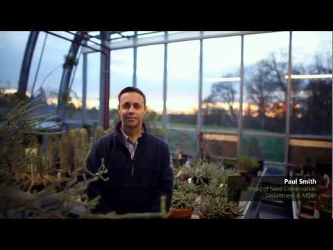 Beyond the Gardens: The Millennium Seed Bank Partnership (Music by Keith Kenniff)