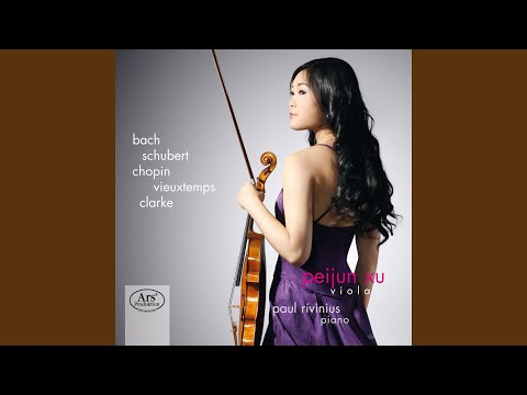 Violin Partita No. 2 in D Minor, BWV 1004 (arr. for viola) : V. Ciaccona