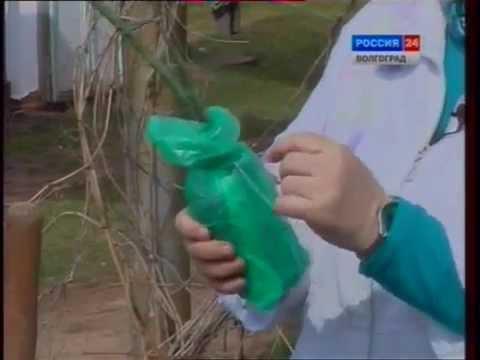Чистим и смазываем как ухаживать за пластиковыми окнами