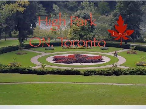 High Park ( Fall 2018 ) Ontario, Toronto