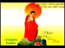 AMITABHA SUTRA - (Vietnamese Version) - Tri Tung Kinh A Di Da 2/2