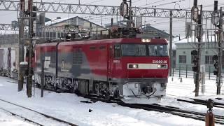 JR貨物 EH500-36貨物列車 金太郎 五稜郭駅