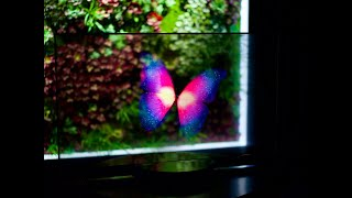 Xiaomi Transparent TV Official…