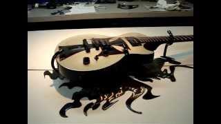 Custom Guitar Display