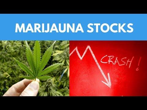 Great Lessons From The Marijuana Stocks Crashing Today