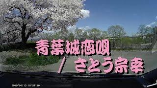 青葉城恋唄 / さとう宗幸 カバー (福島市、荒川桜づつみ河川公園)【再掲】 thumbnail