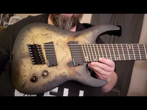Out Of My Comfort Zone! Legator Ninja, 8 String