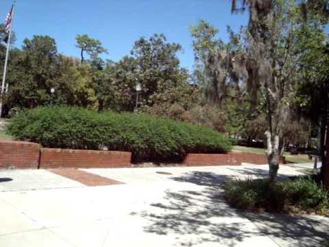 University of Florida campus - Gainesville