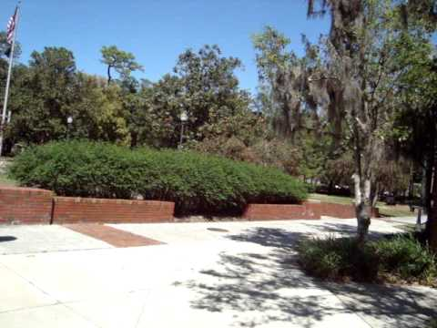 University of Florida campus - Gainesville