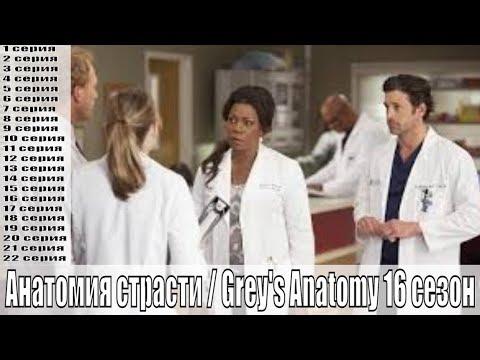 Анатомия страсти / Grey's Anatomy 16 сезон 1,2,3,4,5,6,7,8,9,10,11,12,13,14-22 серия / сюжет, анонс