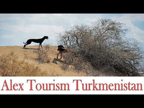 Мир пустыни Каракумы глазами фотографа / World Of The Desert Through The Eyes Of The Photographer