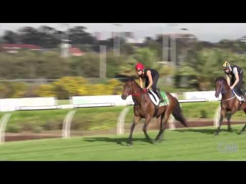 Horse Racing Fairy Tale: Gordon Lord Byron