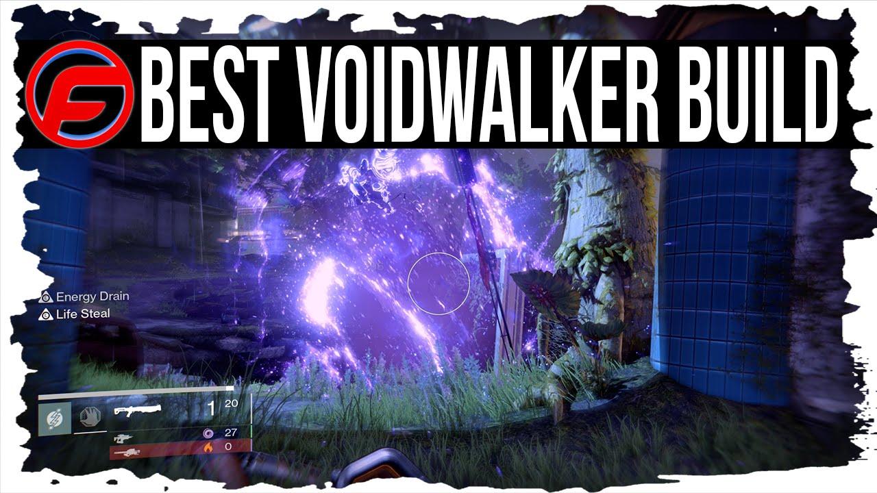 Best Voidwalker Build For Raid