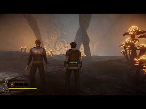 Signs of Darkness  Early Access  Test Stream