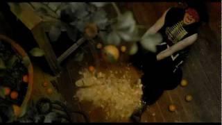 Massive Attack - Paradise Circus (The Fall Video + Lyrics)