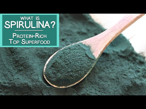 What is Spirulina? A Protein-rich Top Superfood Algae